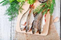 Προετοιμασμένος για το τηγάνισμα roach ψαριών στοκ εικόνα με δικαίωμα ελεύθερης χρήσης