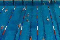 Προθέρμανση ανταγωνισμού κολυμβητών Στοκ Εικόνα