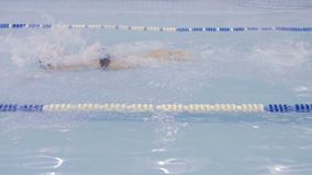 Προθέρμανση κολυμβητών πρίν κολυμπά απόθεμα βίντεο