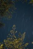 προκαλούμενη φωτογραφική μηχανή γήινη έκθεση μακριά ίχνη αστεριών περιστροφής s μετακίνησης Στοκ Φωτογραφίες