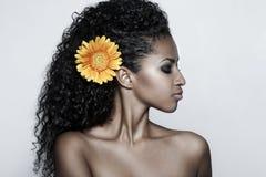προκλητική γυναίκα πορτρέτου μόδας στοκ φωτογραφία με δικαίωμα ελεύθερης χρήσης