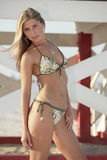 Προκλητική γυναίκα bikini Στοκ φωτογραφίες με δικαίωμα ελεύθερης χρήσης