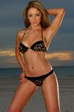 Προκλητικό bikini κορίτσι Στοκ Εικόνες