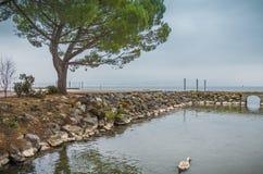 Προκυμαία στη λίμνη της Γενεύης στοκ φωτογραφία