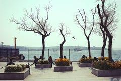 Προκυμαία την άνοιξη, άνθρωποι, δέντρα και λουλούδια Στοκ φωτογραφία με δικαίωμα ελεύθερης χρήσης