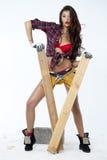 Προκλητικός ξυλουργός στοκ εικόνα