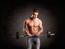 Προκλητικός τύπος ανυψωτών βάρους που παρουσιάζει μυς Στοκ Εικόνες