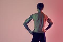 Προκλητικός φίλαθλος κατάλληλος αθλητής Μυϊκός γυμνός κορμός από πίσω σε ένα κόκκινο υπόβαθρο Στοκ εικόνες με δικαίωμα ελεύθερης χρήσης