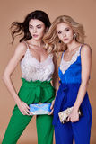 Προκλητικός όμορφος κομψός θρόμβος ύφους γυναικείας φυσικός μόδας γυναικών δύο στοκ φωτογραφίες