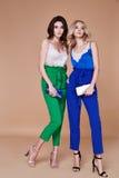 Προκλητικός όμορφος κομψός θρόμβος ύφους γυναικείας φυσικός μόδας γυναικών δύο στοκ φωτογραφία