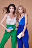Προκλητικός όμορφος κομψός θρόμβος ύφους γυναικείας φυσικός μόδας γυναικών δύο στοκ εικόνα με δικαίωμα ελεύθερης χρήσης