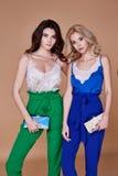 Προκλητικός όμορφος κομψός θρόμβος ύφους γυναικείας φυσικός μόδας γυναικών δύο στοκ φωτογραφίες με δικαίωμα ελεύθερης χρήσης
