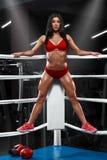 Προκλητικό κορίτσι ικανότητας που παρουσιάζει μυϊκό αθλητικό σώμα, ABS Μυϊκή γυναίκα στο εγκιβωτίζοντας δαχτυλίδι Στοκ Φωτογραφίες