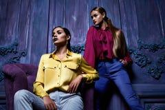Προκλητικό ύφος μόδας επιχειρησιακών κομμάτων συλλογής κοστουμιών φορεμάτων γυναικών Στοκ εικόνες με δικαίωμα ελεύθερης χρήσης