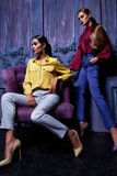 Προκλητικό ύφος μόδας επιχειρησιακών κομμάτων συλλογής κοστουμιών φορεμάτων γυναικών Στοκ Εικόνες