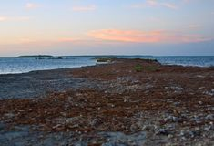 Προοπτική από ένα δύσκολο σημείο στους Florida Keys Στοκ εικόνες με δικαίωμα ελεύθερης χρήσης