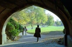 προοπτική πάρκων της Νέας Υ Στοκ εικόνα με δικαίωμα ελεύθερης χρήσης