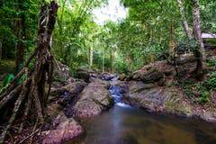Προορισμοί Ρίο Celeste ταξιδιού υποβάθρου φύσης του Ρίο CelesteCosta Rica προορισμών ταξιδιού υποβάθρου φύσης της Κόστα Ρίκα Στοκ φωτογραφίες με δικαίωμα ελεύθερης χρήσης
