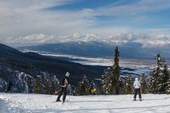 Προς τα κάτω κάνοντας σκι στην ηλιόλουστη ημέρα Στοκ φωτογραφία με δικαίωμα ελεύθερης χρήσης