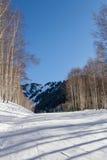 Προς τα κάτω κάνοντας σκι το χειμώνα Στοκ εικόνες με δικαίωμα ελεύθερης χρήσης