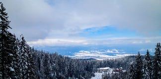 Προς τα κάτω κάνοντας σκι Στοκ Φωτογραφία