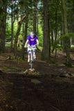Προς τα κάτω ποδηλάτης βουνών σε ένα δάσος κοντά σε Kronberg, Γερμανία Στοκ εικόνες με δικαίωμα ελεύθερης χρήσης