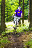 Προς τα κάτω ποδηλάτης βουνών σε ένα δάσος κοντά σε Kronberg, Γερμανία Στοκ Εικόνα
