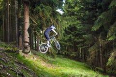 Προς τα κάτω ποδηλάτης βουνών σε ένα δάσος κοντά σε Kronberg, Γερμανία Στοκ φωτογραφία με δικαίωμα ελεύθερης χρήσης