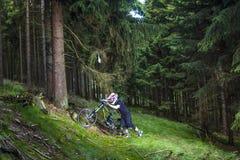 Προς τα κάτω ποδηλάτης βουνών σε ένα δάσος κοντά σε Kronberg, Γερμανία Στοκ Φωτογραφίες
