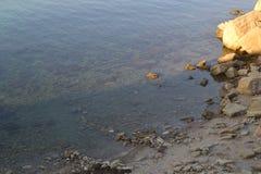 Προσέγγιση της θάλασσας Στοκ Εικόνα