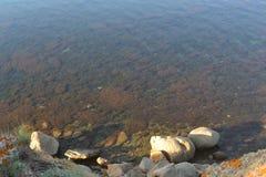 Προσέγγιση της θάλασσας Στοκ εικόνες με δικαίωμα ελεύθερης χρήσης
