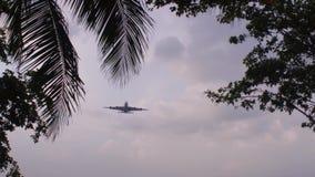 Προσγειωμένος μεγάλο φορτίο αεροπλάνων απόθεμα βίντεο