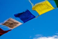 προσευχή σημαιών τροπική Στοκ φωτογραφίες με δικαίωμα ελεύθερης χρήσης