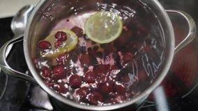 Προσθέστε τη φέτα του λεμονιού στο τηγάνι με το νερό και τα μούρα Κόκκινη, μαύρη σταφίδα, σμέουρο απόθεμα βίντεο