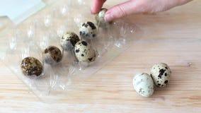 Προσθήκη των αυγών ορτυκιών στο εμπορευματοκιβώτιο απόθεμα βίντεο