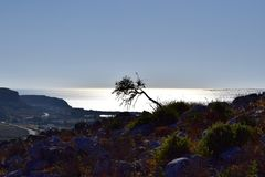προσοχή ανατολής θάλασσας ζευγών στοκ εικόνες με δικαίωμα ελεύθερης χρήσης
