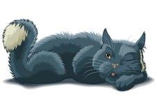 προσοχή γατών Στοκ εικόνα με δικαίωμα ελεύθερης χρήσης