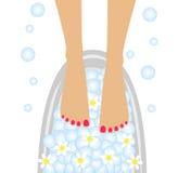 Προσοχή των ποδιών, birdbaths με τα λουλούδια camomile απεικόνιση αποθεμάτων