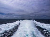 Προσοχή φαλαινών ιχνών βαρκών Στοκ φωτογραφίες με δικαίωμα ελεύθερης χρήσης
