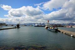 Προσοχή φαλαινών σε Husavik Στοκ φωτογραφία με δικαίωμα ελεύθερης χρήσης