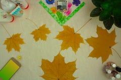 Προσοχή Makeup και καρφιών, cottonwool, φύλλα σφηνών, χρωματισμένη πετσέτα Στοκ Εικόνα