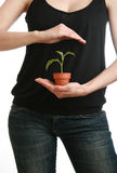 προστασία φυτών χεριών περ&io στοκ φωτογραφία
