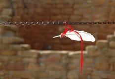 προσφορά φτερών Στοκ Φωτογραφίες