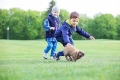 Προσχολικά αγόρια που πιάνουν το κουνέλι κατοικίδιων ζώων στο πάρκο Στοκ φωτογραφία με δικαίωμα ελεύθερης χρήσης