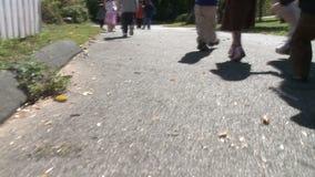 Προσχολικά ηλικίας παιδιά που περπατούν κατά μήκος της πορείας (5 5) απόθεμα βίντεο