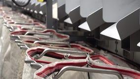 Προσωπικό που εργάζεται στις αυτοματοποιημένες τσάντες πλήρωσης συστημάτων δεμάτων ταξινομώντας φιλμ μικρού μήκους