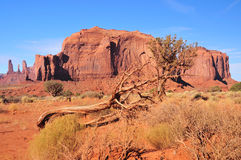 Προϊστορικό οροπέδιο του βράχου στην έρημο της Αριζόνα Στοκ Εικόνες
