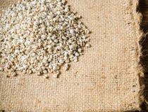 προϊόντα γεωργίας, job& x27 δάκρυα του s Στοκ φωτογραφία με δικαίωμα ελεύθερης χρήσης