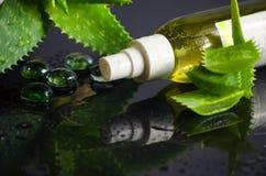 Προϊόντα ομορφιάς για τη SPA με aloe Βέρα Στοκ Εικόνες