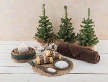 Προϊόντα πρώτης ανάγκης SPA και λουτρών με τον αγροτικό κλάδο κεριών και βαμβακιού Στοκ Εικόνες